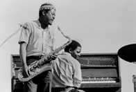 A climbing vine through concrete: Jazz in 1960s South Africa